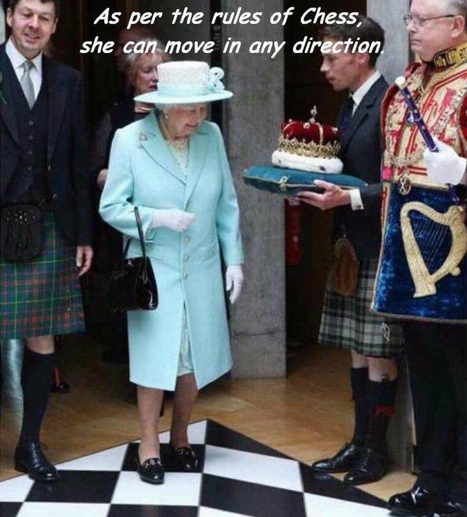 La reine se déplace d'une case dans toutes les directions.