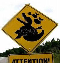 Attention aux crocodiles