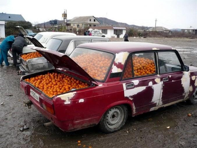 La voiture d'un type qui ne veut vraiment pas être en manque de vitamine C.