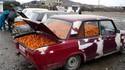 Accros aux oranges