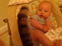 Un bébé et un chat