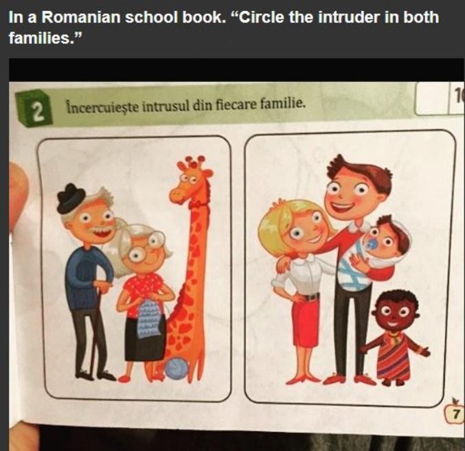 """Dans un livre scolaire en Roumanie : """"Entoure l'intrus dans les deux familles""""."""