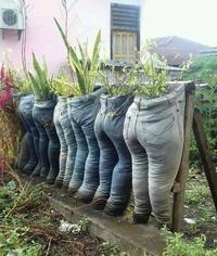 Des pantalons bien remplis