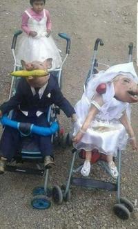 Mariage porcin.