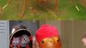 Une araignée imitant une fourmi