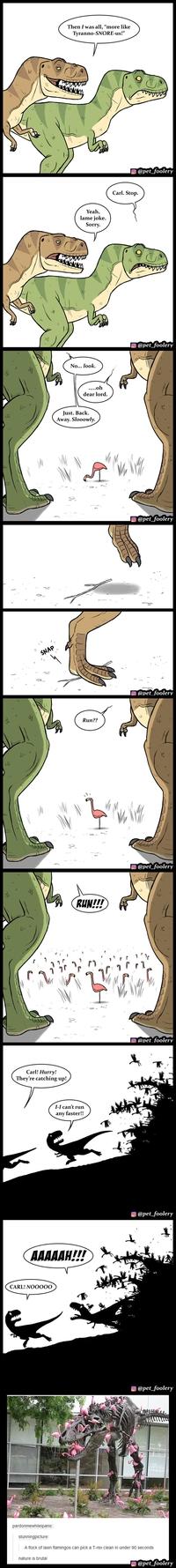 Une histoire de T-rex et de flamants roses