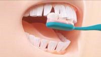 Dents à brosses